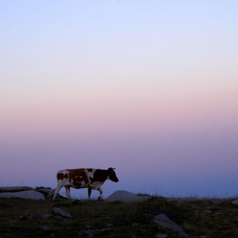 sunset-prati