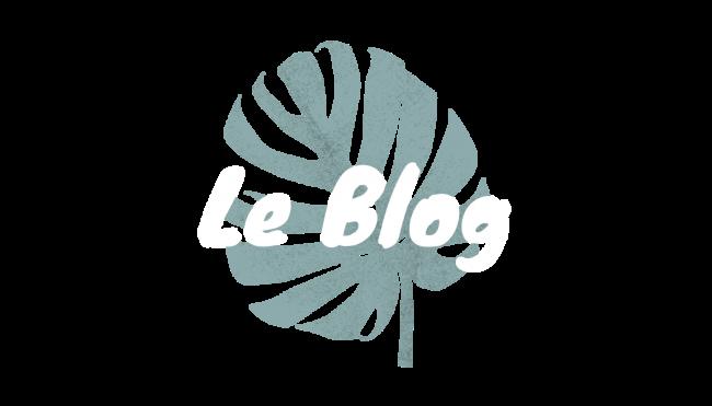 logo-blog-blanc